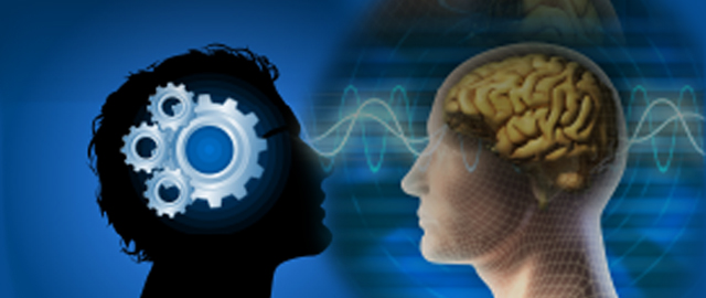Function of Midbrain Activation :