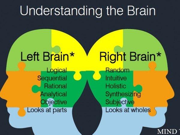 Midbrain activation- understanding the brain